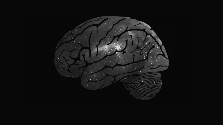 Beyni Güçlendiren Besinler