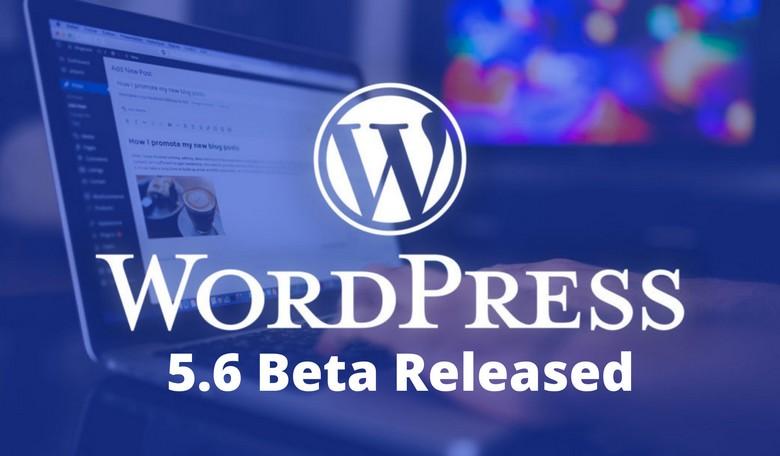 WordPress 5.6 Özellikleri Neler
