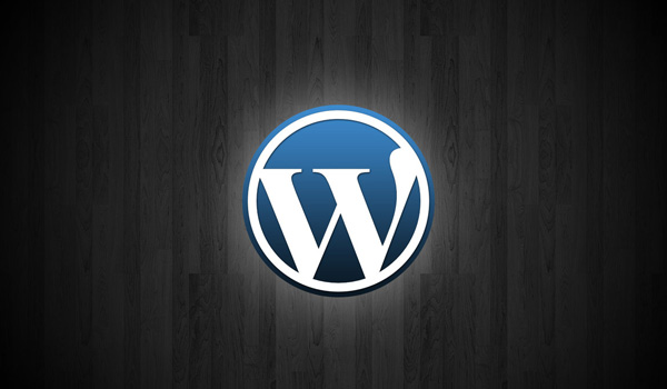 WordPress 3.3.2 Sürümü Duyuruldu